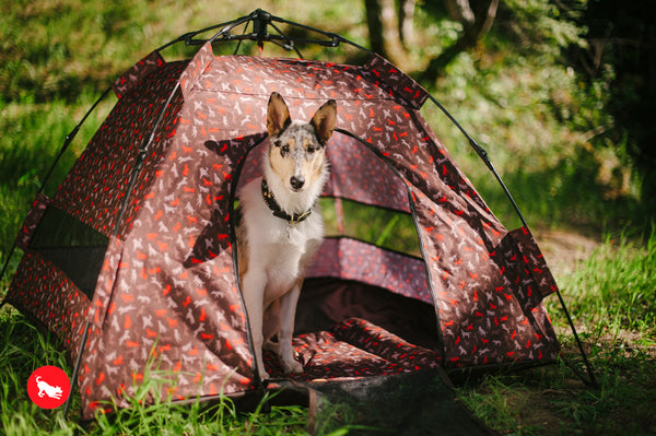 Outdoor Dog Tent in Mocha