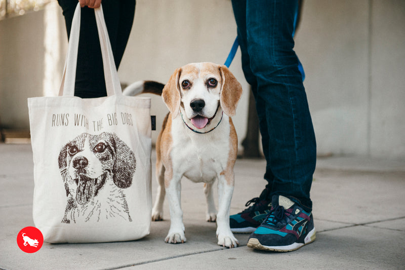 PLAY Best in Show Tote - Beagle - RUNS WITH THE BIG DOGS