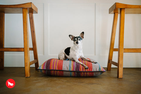 PLAY Horizon Pillow Dog Bed Desert