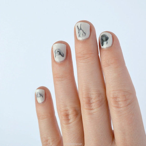 Nail transfer: Rabbits