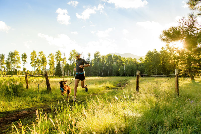 Ruffwear: Trail Runner Dog Leash Belt System
