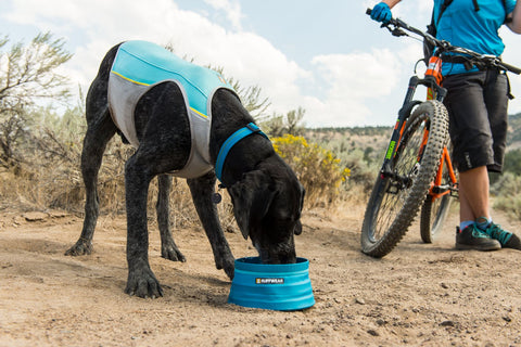 Ruffwear Dog Cooling Vest: Jetstream