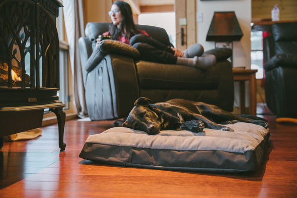 Ruffwear Restcycle Bed for Dogs and Cats