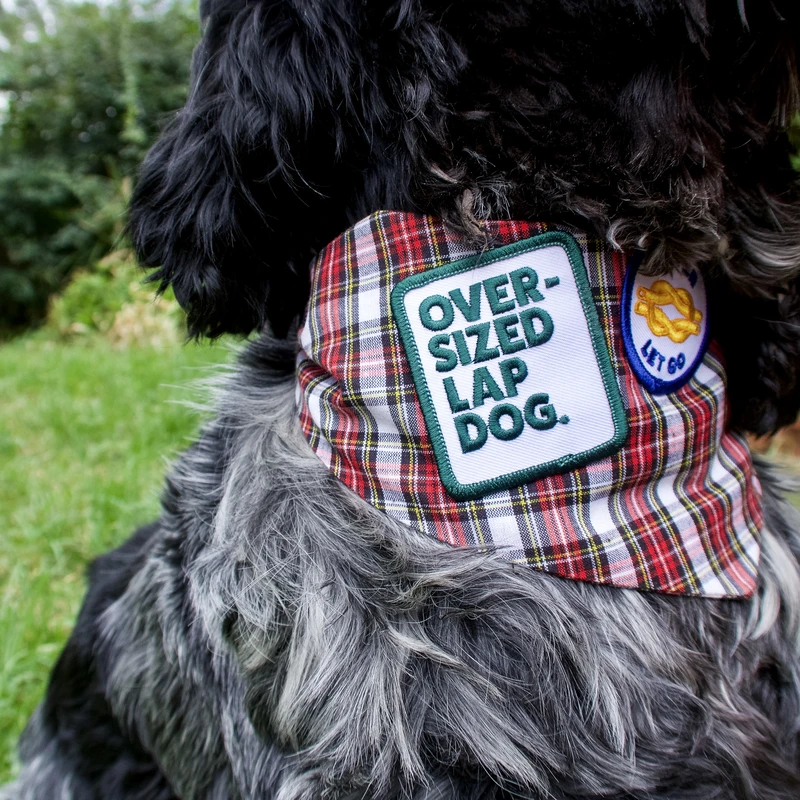 Dog Merit Badges: Oversized Lap Dog