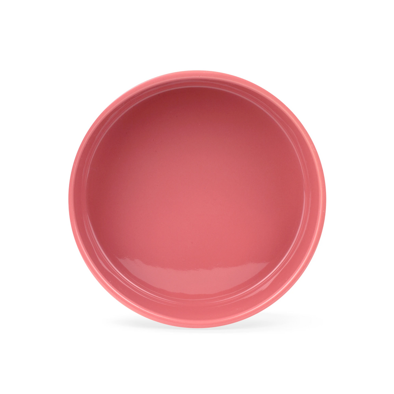 Sculpt Paw Ceramic Dog Food Water Bowl in Coral