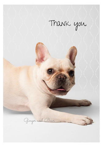 Thank you Notecard box: French Bulldog