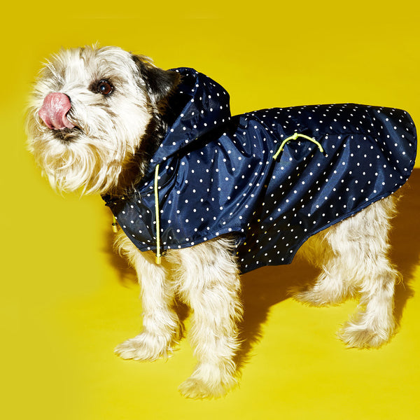 Ware of the Dog Dot Anorak Raincoat with Hood in Navy/White Polka dots