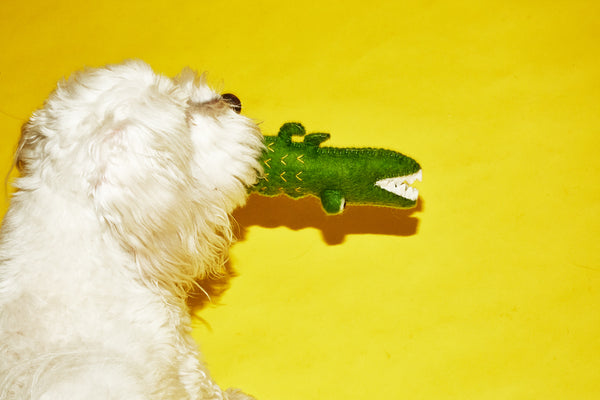 Ware of the Dog toy Boiled Wool Alligator