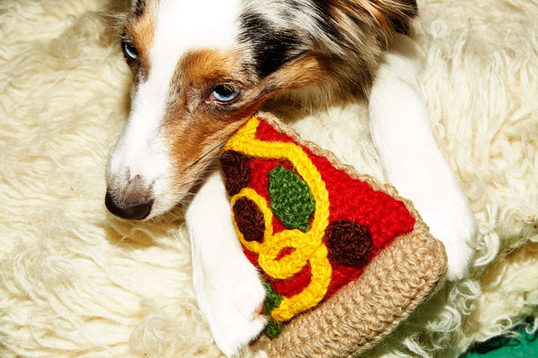 Ware of the Dog toy Hand knitted Lambswool Pizza