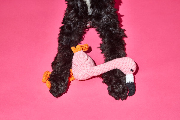 Ware of the Dog toy Hand knitted organic cotton Flamingo