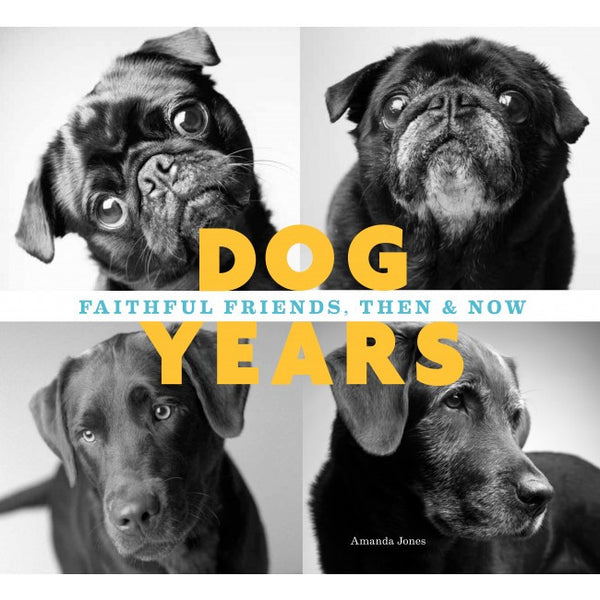 Book: Dog Years: Faithful friends, then and now