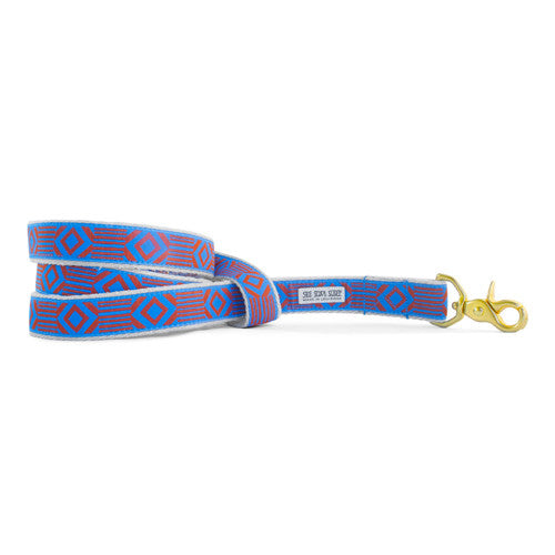 Out of My Box Leash, Lake Blue and Rust