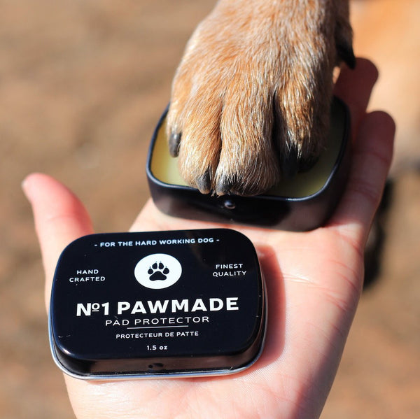 Loyal Canine Co First No. 1 Pawmade Balm Ointment hand2
