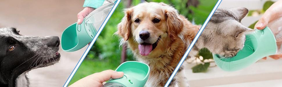 Portable and BPA Free Dog Bottle