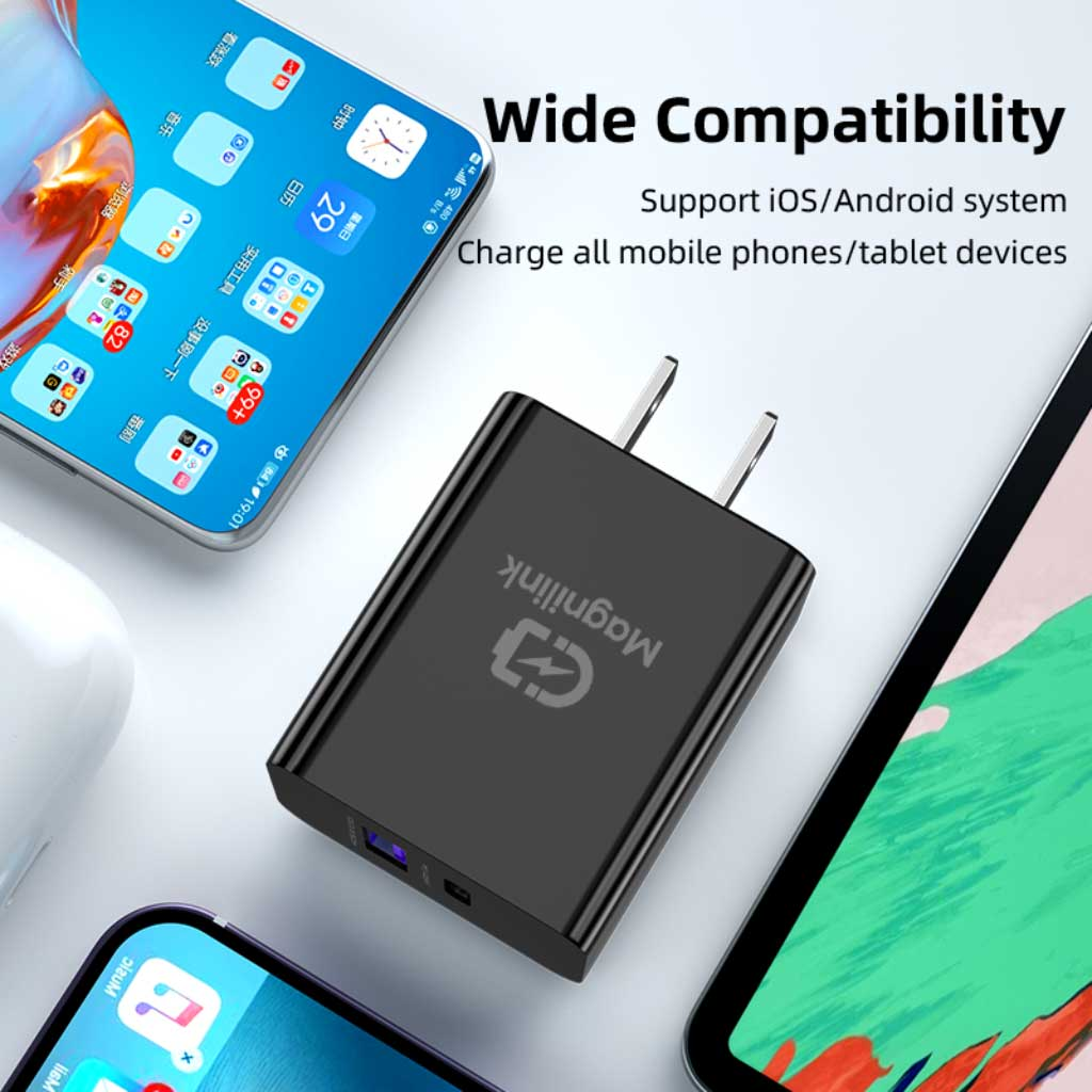 PowerCharge Duo 20W Dual USB wall charger - Dope-Gadget.com