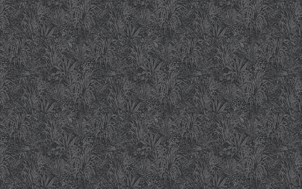 Dark Grey Amazon Wallpaper