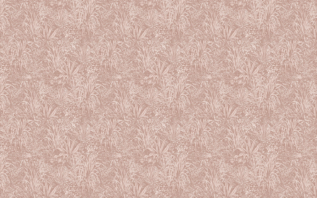 Blush Pink Amazon Wallpaper