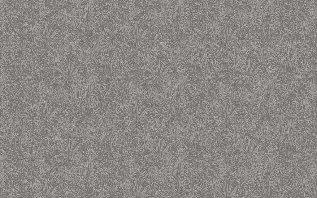 Grey Amazon Wallpaper
