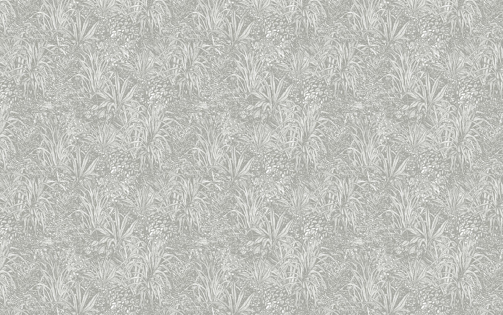 Light Grey Amazon Wallpaper