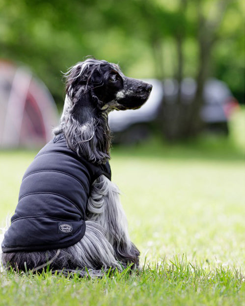 SP Flexible Insulated Dog Jacket