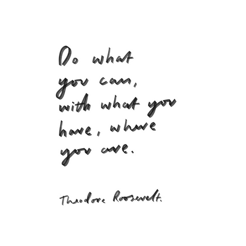 Do What You Can Theodore Roosevelt Inspirational Quote