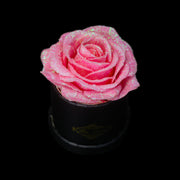 Pink Glitter Roses - Black Micro Box (1 Rose)