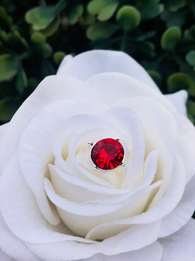 Ruby Red Rhinestone Jewels