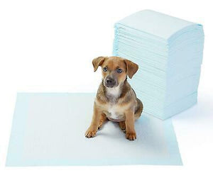 Pet Training Pad