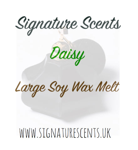 Daisy Soy Wax Melt Pod - SignatureScents UK