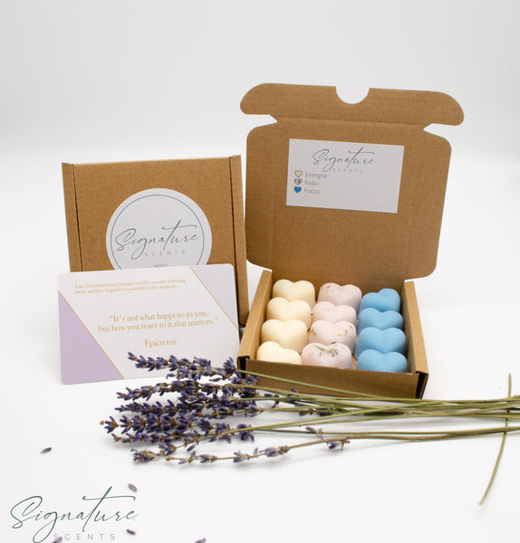 MIND Scented Soy Wax Melt Gift Set - Mindfulness, Relaxation & Meditation 90g Gift Box - SignatureScents UK