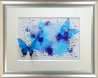 blue butterfly by flutterframes