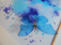 Blue 3d butterfly framed picture