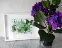 Grren butterflies in a box frame, Green Floating effect