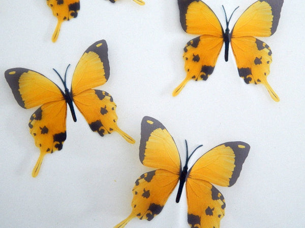 3d  pretty butterflies Yellow 3D Flying Removable Butterflies  Home Decorations Wall Art window wedding tables caravan garden decor,outside