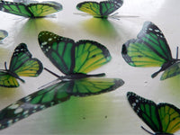 6 Green natural Luxury Amazing  Butterflies 3D Butterfly Wall Art Flying Removable Butterflies  Home Decorations Wall Art