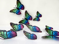 7 3d Rainbow multi-coloured butterflies lounge, hall, conservatory, bathroom, bedroom,garden, bedroom,living room,kitchen,wall art stickers