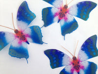 3d Butterfly stickers Colourful Starburst natural BUTTERFLIES REALISTIC Enchanted butterflies British butterflies,inside or outside,garden