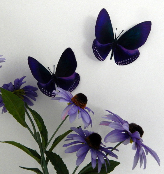purple 3d butterflies by flutterframes