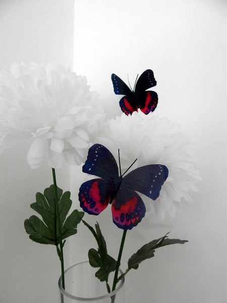 black and red butterfly by flutterframes
