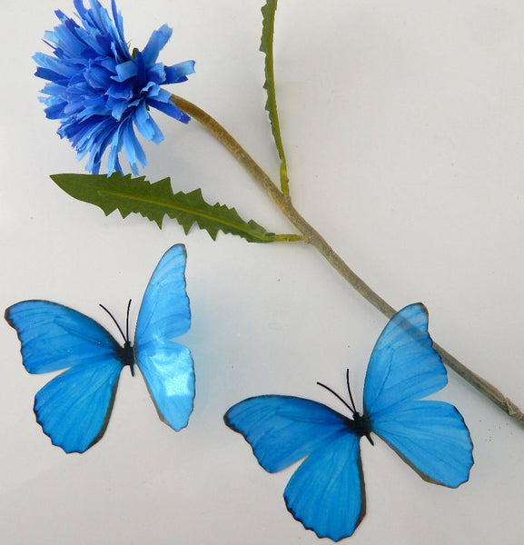 Natural blue butterfly 3d sticker