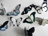 Black and white Natural reproduction 3d butterfly wall stickers,sun catcher,plant pots,walls,table decor,conservatory,windows,display