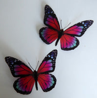 Monarch Wall butterflies,6 3d Pink Monarch Butterfly Wall Art. Home Decorations Wall Art,conservatory,garden