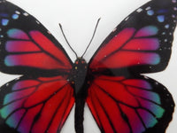 Pink red wall sticker pretty butterfly