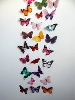 Futterframes's Amazing butterfly collection. Display of realistic 3d butterflies,butterfly decor for the wall,conservatory, home,bedroom
