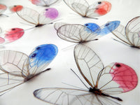 glass winged butterflies for decor by flutterframes