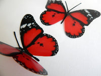 Red Scarlet Butterfly 3d ,luxury butterfly wall art, Home Decor Room Stickers Red 3D, butterflies wall decal,Home Decor,Wall Decal Wedding
