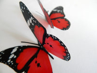 Scarlet red butterfly stickers  by flutterframes
