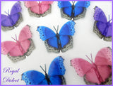 multi colours butterflies for wedding