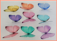 wall sticker butterflies