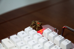 Gold Dragon Head Keycap - TheKeyCaps - KeyCap